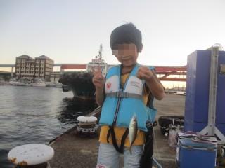 神戸港北公園・サビキ釣り